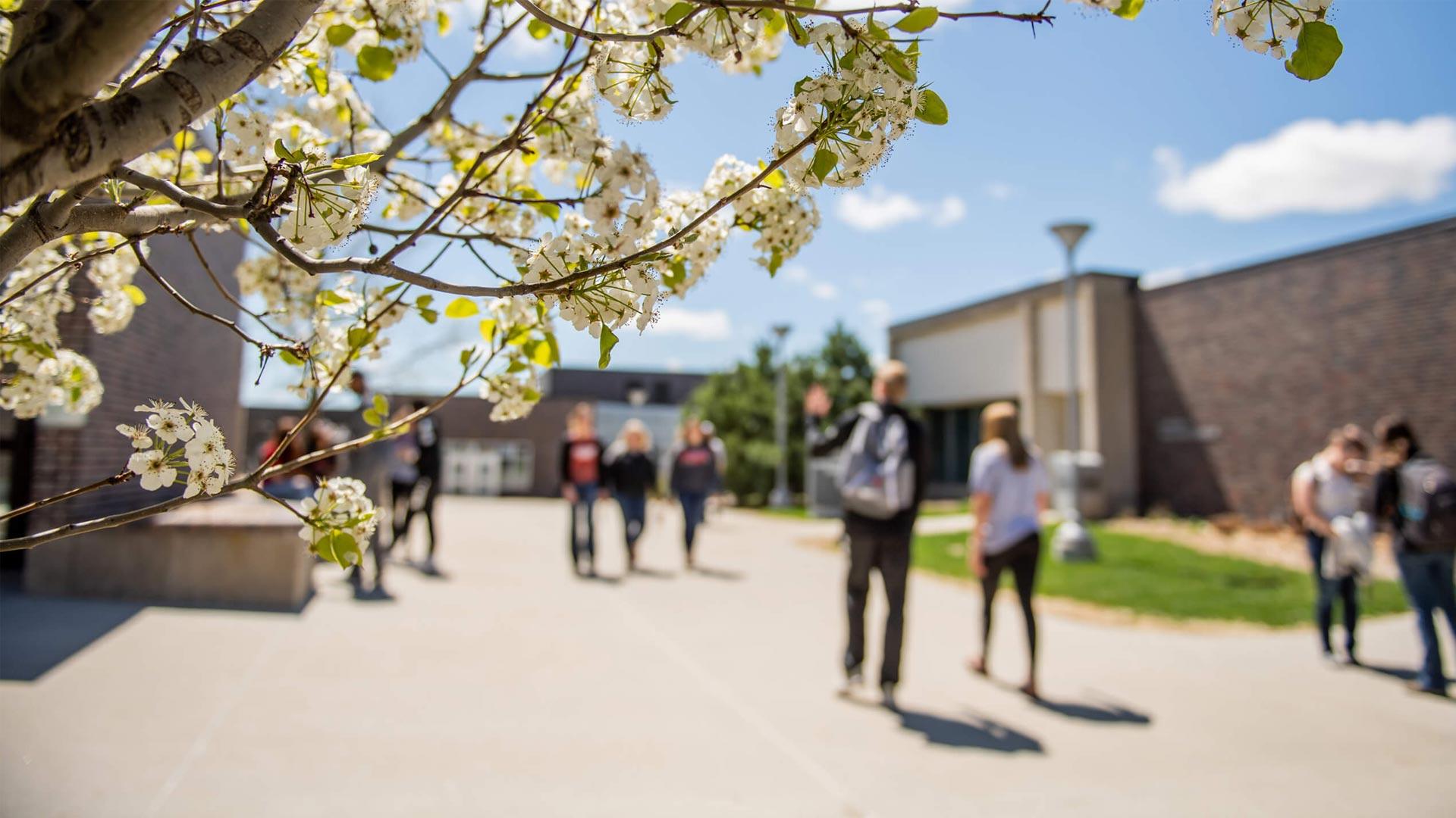 Northeast Community College's Campus